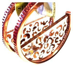 Anthropologie Lucite & Copper Hoop Earrings